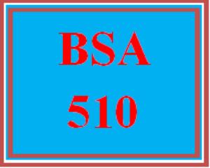 BSA 510 Wk 3 Discussion - Balanced Scorecard | eBooks | Education