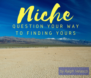 niche: question your way to finding yours