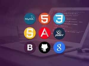 the complete fullstack web developer course