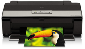 the exceptional quality of the epson photo r1900 for professional prints