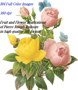 184 full color fruits and flowers .tiff format