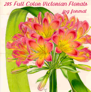 285 gorgeous vintage victorian floral illustrations