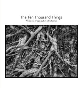 The Ten Thousand Things | Audio Books | Non-Fiction