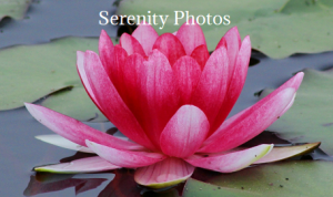 100 serenity photographs
