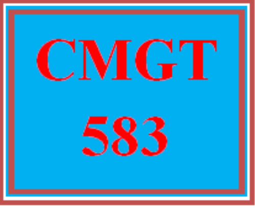 First Additional product image for - CMGT 583 Wk 3 - Measurable Values