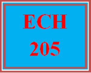 ECH 205 Wk 2 Activity Booklet | eBooks | Education