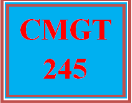 First Additional product image for - CMGT 245 Wk 1 Discussion - Risk Management Process