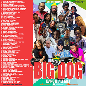 dj roy big dog dancehall mix [jan 2021]