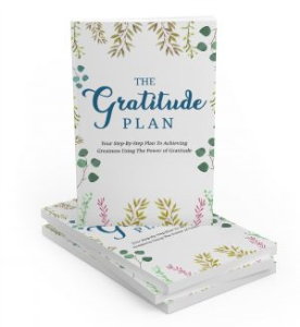 the gratitude plan - mrr