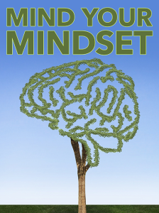 Mind Your Mindset Special Report | eBooks | Business and Money