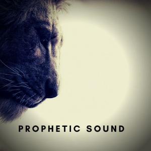 prophetic  sound - 1 hour intercession instrumental
