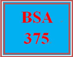 bsa 375 wk 5 – apply: webstore implementation and maintenance plan