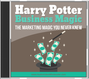 harry potter business