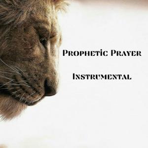 prophetic prayer instrumental
