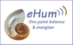 ehum online