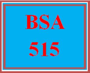 bsa 515 wk 2 - project plan and risk matrix