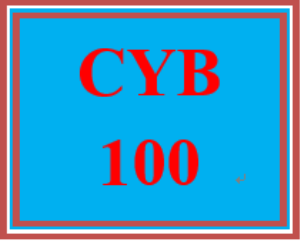 CYB 100 Wk 1 - Apply: Signature Assignment: Defining the Cyber Domain | eBooks | Education