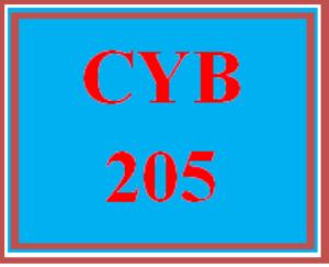 cyb 205 entire course