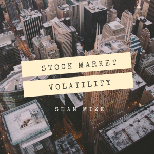 Stock Market Volatility | Audio Books | Business and Money