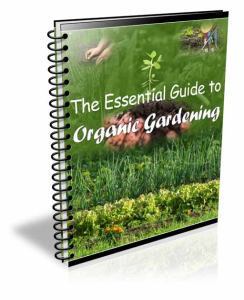 the essential guide to organic gardening
