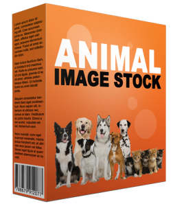animal stock images (56 images)