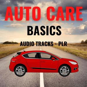 auto care basics