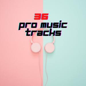 36 Pro Music Tracks | Music | Instrumental