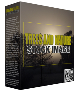 trees and nature stock images (14 images)