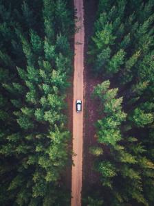 drivingsong