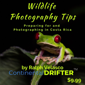 Wildlife Photography Tips by The Continental DRIFTER | eBooks | Travel