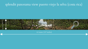 splendit panorama puerto viejo la selva (4.0 x 0.5 m) jpeg original size