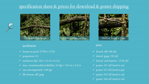 First Additional product image for - splendit panorama puerto viejo la selva (4.0 x 0.5 m) Poster sent to USA