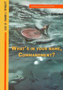 what's in your name, commandment
