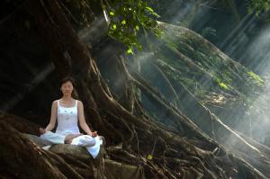 ancestor's meditation