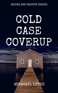 cold case coverup e-novel