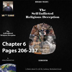 video book chapter 6 pages 206-237