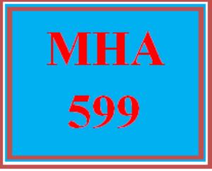 mha 599 entire course
