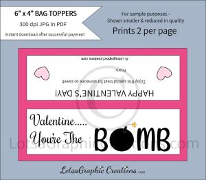 valentine...you'rethebombbagtoppers