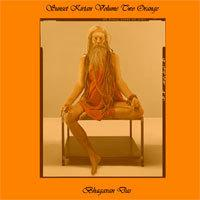 MP3 Download: Bhagavan Das LIVE! SUNSET KIRTAN, Volume #2 | Music | World