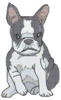 boston terrier cross stitch pattern