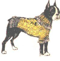 knitted dog blanket pattern