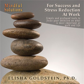 Mindful Solutions for Success and Stress Reduction at Work | Audio Books | Business and Money
