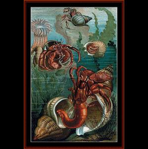 hermit crabs - wildlife cross stitch pattern by cross stitch collectibles