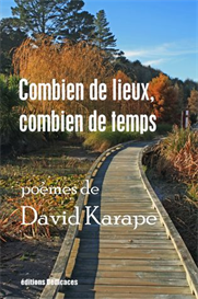 Combien de lieux combien de temps de David Karape | eBooks | Poetry
