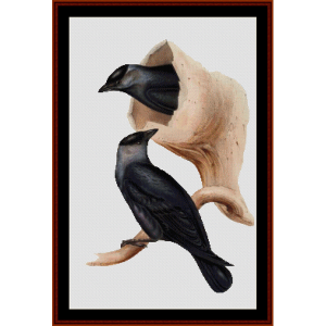 jackdaw - wildlife cross stitch pattern by cross stitch collectibles