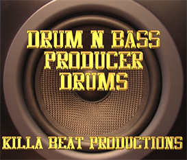 drum n bass producer drums and samples