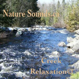 Creek Relaxation | Music | Ambient