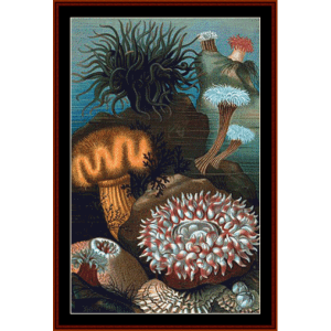 Sea Anemones - Wildlife cross stitch pattern by Cross Stitch Collectibles | Crafting | Cross-Stitch | Wall Hangings