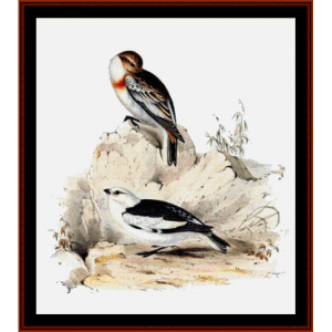 snow bunting - wildlife cross stitch pattern by cross stitch collectibles