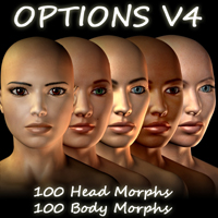 options for v4